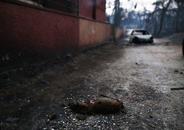 Η καταστροφή μετά τη φονική πυρκαγιά στο Μάτι της Νέας Μάκρης