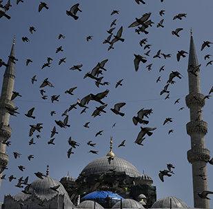 Το Γενί Τζαμί στην Κωνσταντινούπολη, στην Τουρκία