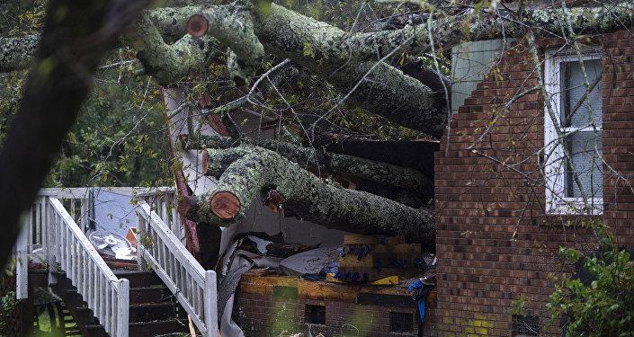 Δένδρο έπεσε σε σπίτι λόγω της καταιγίδας Φλόρενς στις ΗΠΑ